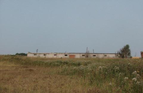 Продам зерносклад/лесопилка, 675 кв.м, с. Ягул - Фото 3