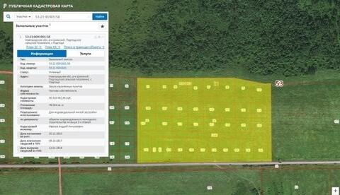 Продажа земельного участка в Шимском районе деревне Подгощи - Фото 2