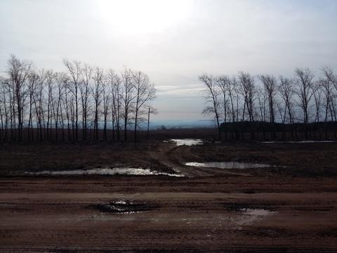 Продам земельный участок в с. Первушино, 30 км, от Уфы - Фото 4