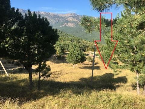 Участок 4.1 сот. в Ялте с видом на горы, на границе с заповедником - Фото 1