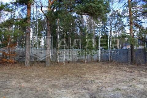 Лесной участок 18 сот. - Фото 3
