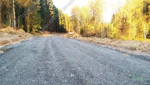 Ярославское ш. 50 км от МКАД, Жилкино, Участок 11.8 сот. - Фото 5