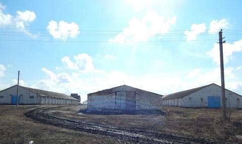 Продажа псн, Ленино, Касимовский район - Фото 1