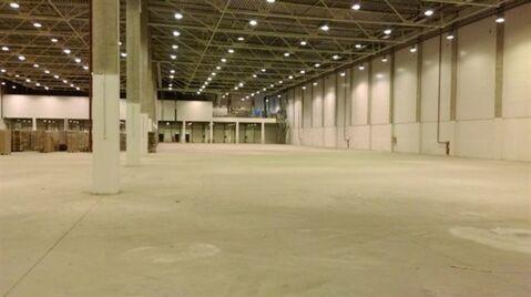 Сдам складское помещение 3500 кв.м, м. Проспект Ветеранов - Фото 3