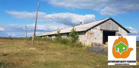Крестьянско-фермерское хозяйство в Шадрино - Фото 1