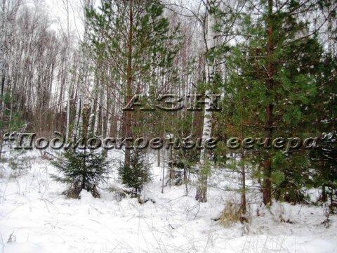 Горьковское ш. 100 км от МКАД, Никифорово, Участок 650 сот. - Фото 4