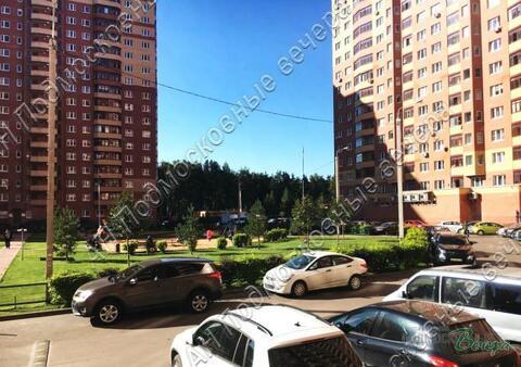 Московская область, Богородский городской округ, деревня Щемилово, . - Фото 4