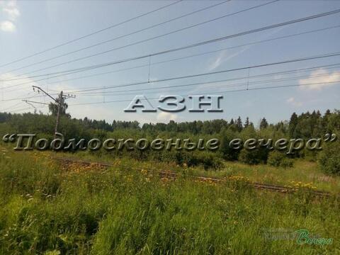 Дмитровское ш. 28 км от МКАД, Большая Черная, Участок 150 сот. - Фото 5