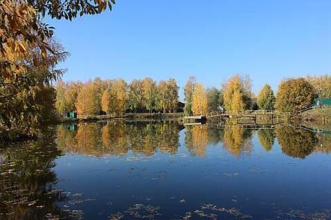 Участок 75 сот. , Рублево-Успенское ш, 27 км. от МКАД. - Фото 2