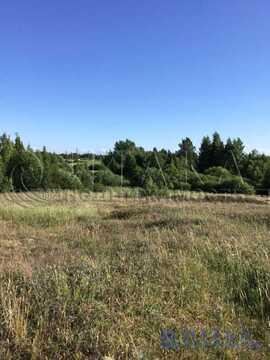 Продажа участка, Зигоска-2, Гдовский район - Фото 5