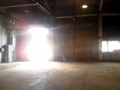 Производственно-складское помещение с отдельными воротами. 250 кв.м - Фото 5