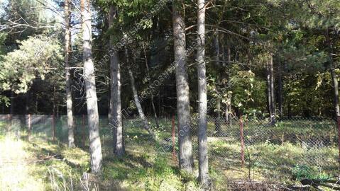 Киевское ш. 50 км от МКАД, Наро-Фоминск, Участок 10 сот. - Фото 4