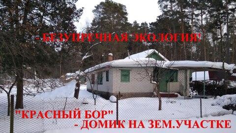 1/2 дома на небольшом клочке земли в окружении столетних сосен, в крас - Фото 1