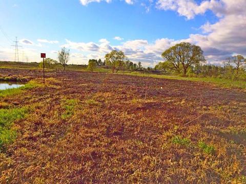 Земельный участок 12 соток в СНТ Самсоновка, рядом с Павловском - Фото 2