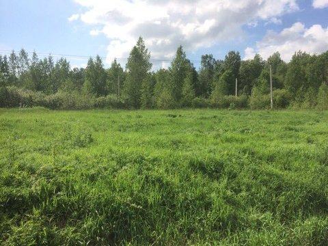 Большие Пороги + 10 мин , д.Островки - Фото 1