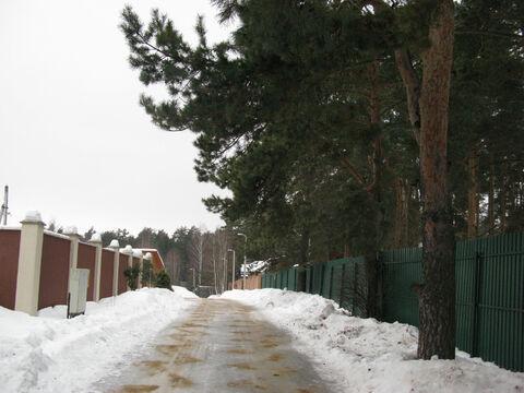 Ильинское . 26км. с. Дмитровское красивый, сосновый участок 30 соток - Фото 1