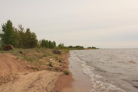 Первая линия Чудского озера - Фото 4