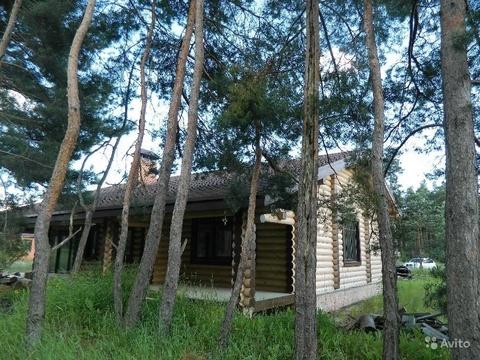 Продам дом в красивом и чистом шебекинском районе село новая таволжанк - Фото 4