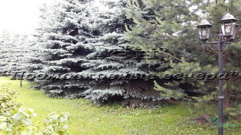 Новорижское ш. 10 км от МКАД, Ильинское-Усово, Участок 12 сот. - Фото 1