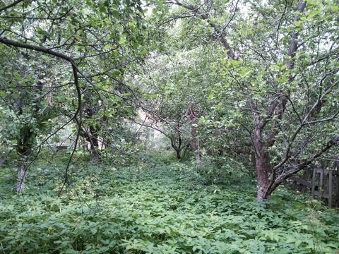 Участок 12 сот. , Щелковское ш, 15 км. от МКАД. - Фото 3
