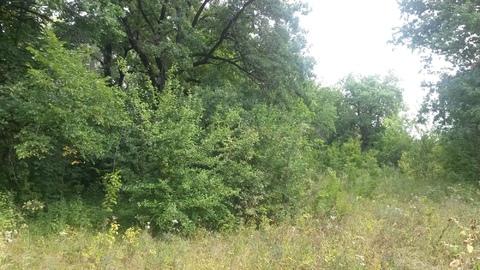 Продается земельный участок в Волжском районе, 300 соток - Фото 2