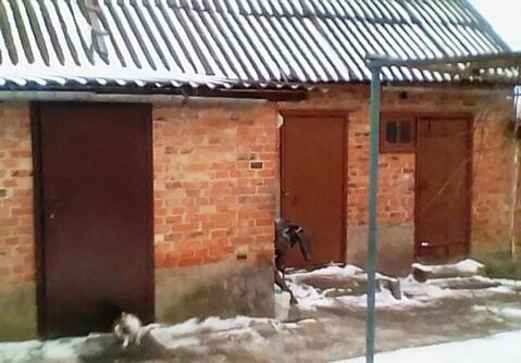 Продажа дома, Грайворон, Грайворонский район, Ул. Свердлова - Фото 4