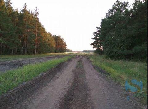 Продажа земельного участка, Успенка, Тюменский район - Фото 3