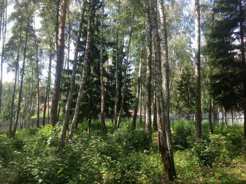 Д. Солослово кп ДПК «Гранит» красивый рельефный лесной участок 1.13 Га - Фото 4