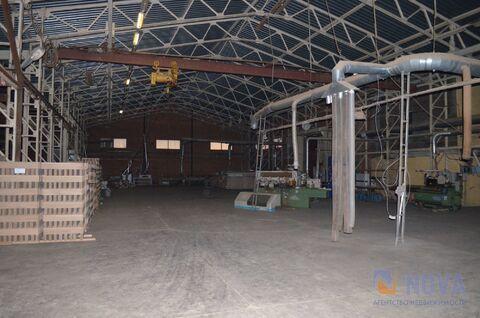 Продается одноэтажное капитальное производственно-складское здание - Фото 3