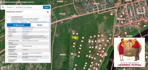 Продам два участка по 24 сотки в черте г. Сольцы Новгородской области - Фото 1