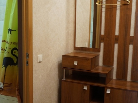 1-к. квартира в г.Пушкино - Фото 3