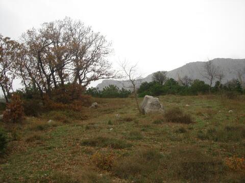Участок в Алупке - Фото 3
