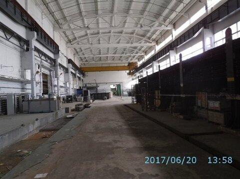 Продам производственное помещение 23262 кв.м, м. Звездная - Фото 4