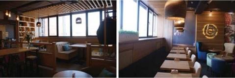 Торговое помещение (кафе) 440 м2 - Фото 3