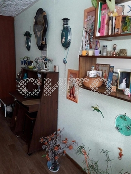 Продажа комнаты, Череповец, Молодежная Улица - Фото 1