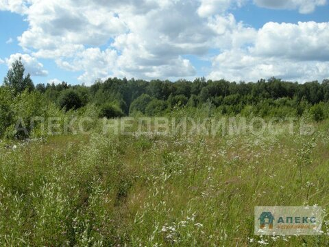 Продажа земельного участка под площадку Лобня Дмитровское шоссе - Фото 3