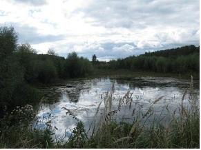 Продажа прудового хозяйства - Фото 3