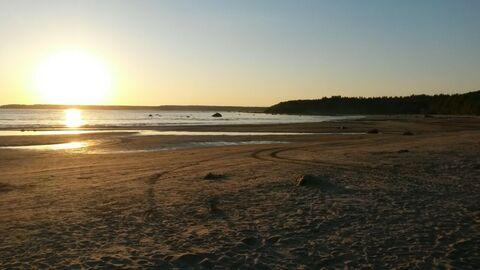 Продается эксклюзивный участок на берегу финского залива на 1 линии - Фото 4