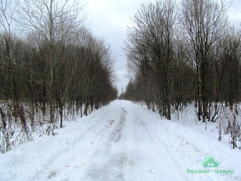 3,7 Га в д.Акулово под сельхоз.производство - 95 км Щёлковское шоссе - Фото 3