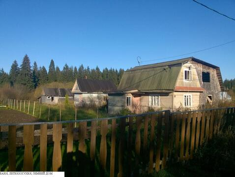 Участок с домом у реки и леса в п. Новолисино, ИЖС - Фото 2