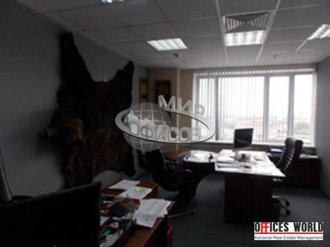 Офис, 201 кв.м. - Фото 3