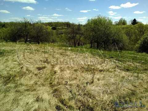 Продажа участка, Филиппово, Дедовичский район - Фото 2