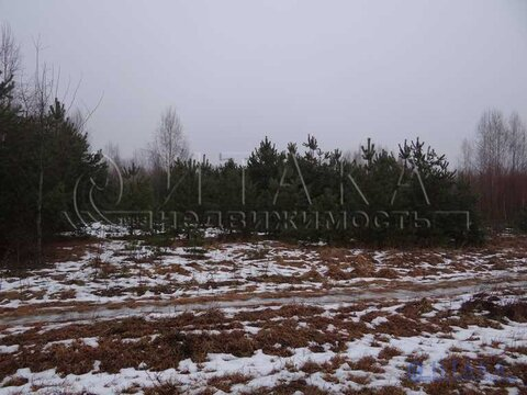 Продажа участка, Крупп, Печорский район - Фото 4