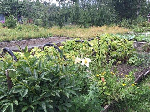 Продается дачка с огородом в СНТ в 15 минутах ходьбы от р. Волга - Фото 2