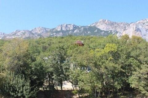 Продам отличный дом 748 м в Алупке на уч 28 соток - Фото 5