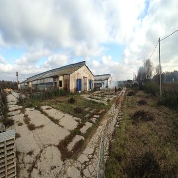 Сдам ферму в аренду Киевское шоссе, 90км, д.Тимашово - Фото 2