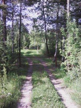 Ст. Запутная Казанского напр, 10 мин пешком, участок СНТ - Фото 3