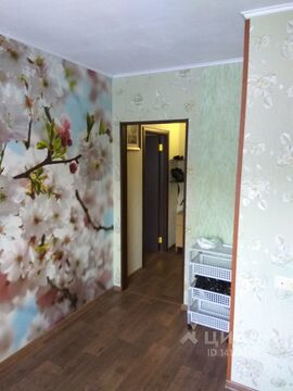 Аренда квартиры, Омск, Улица Ярослава Гашека - Фото 2