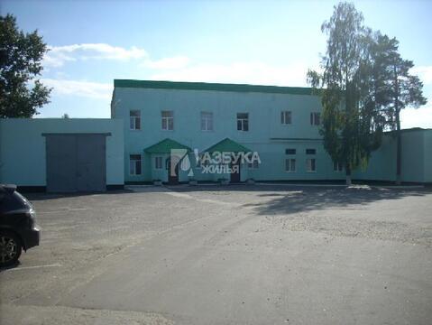 Продажа готового бизнеса, Зеленый, Ногинский район - Фото 2