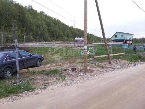 Земельный участок, Зверосовхоз, - Фото 2